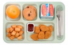 School Food - Chicken Nuggets
