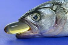 Fish & Oil