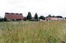 Rothamsted Wheat