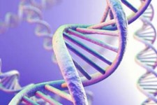 Mutated DNA