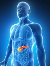 Pancreatic cancer via Shutterstock