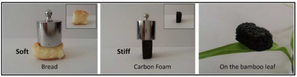 Carbon foam: Strong and light-weight. (Ye Yuan et al., ACS Appl. Mater. Interfaces, 2016.)