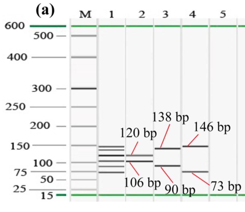 Credit: M. A. Motalib Hossain et al., J. Agric. Food Chem. 2016. DOI: 10.1021/acs.jafc.6b02224