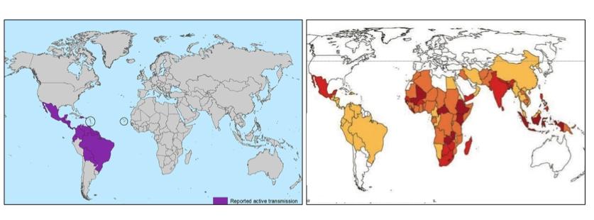 VitA-Zika